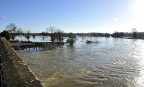 How much longer will this go on? The Thames at Chertsey covering Dumsey Meadow