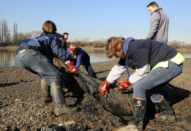 Volunteers working with Thames21 during a river litter pick