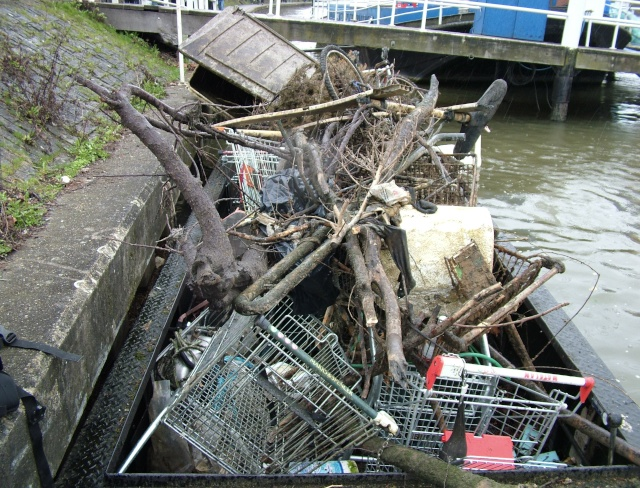 TAC volunteers pulled all these shopping trolleys out of the Thames at Kingston
